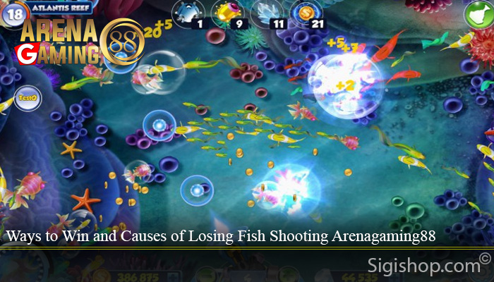 Ways to Win and Causes of Losing Fish Shooting Arenagaming88